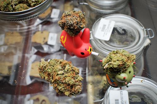 K'omoks First Nation Drug Bust