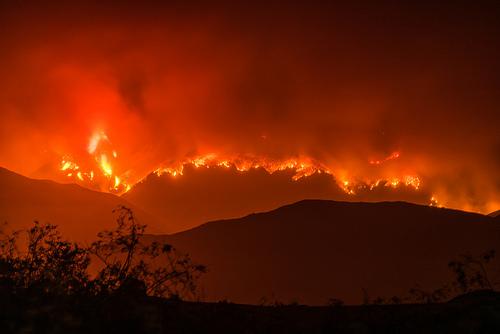 Wildfire Evacuees