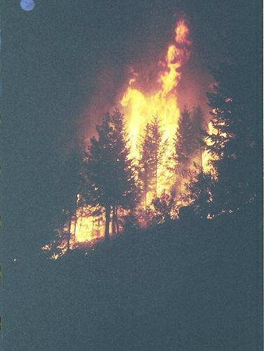 Wildfires-Rain