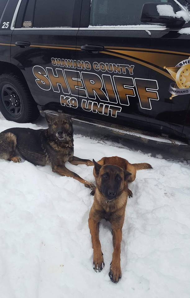 Shawano County Sheriff K-9 Department Transitioning Smoothly With New Addition