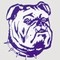 peshtigo-bulldogs