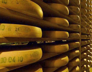 Cheese close to becoming the official state dairy product of Wisconsin