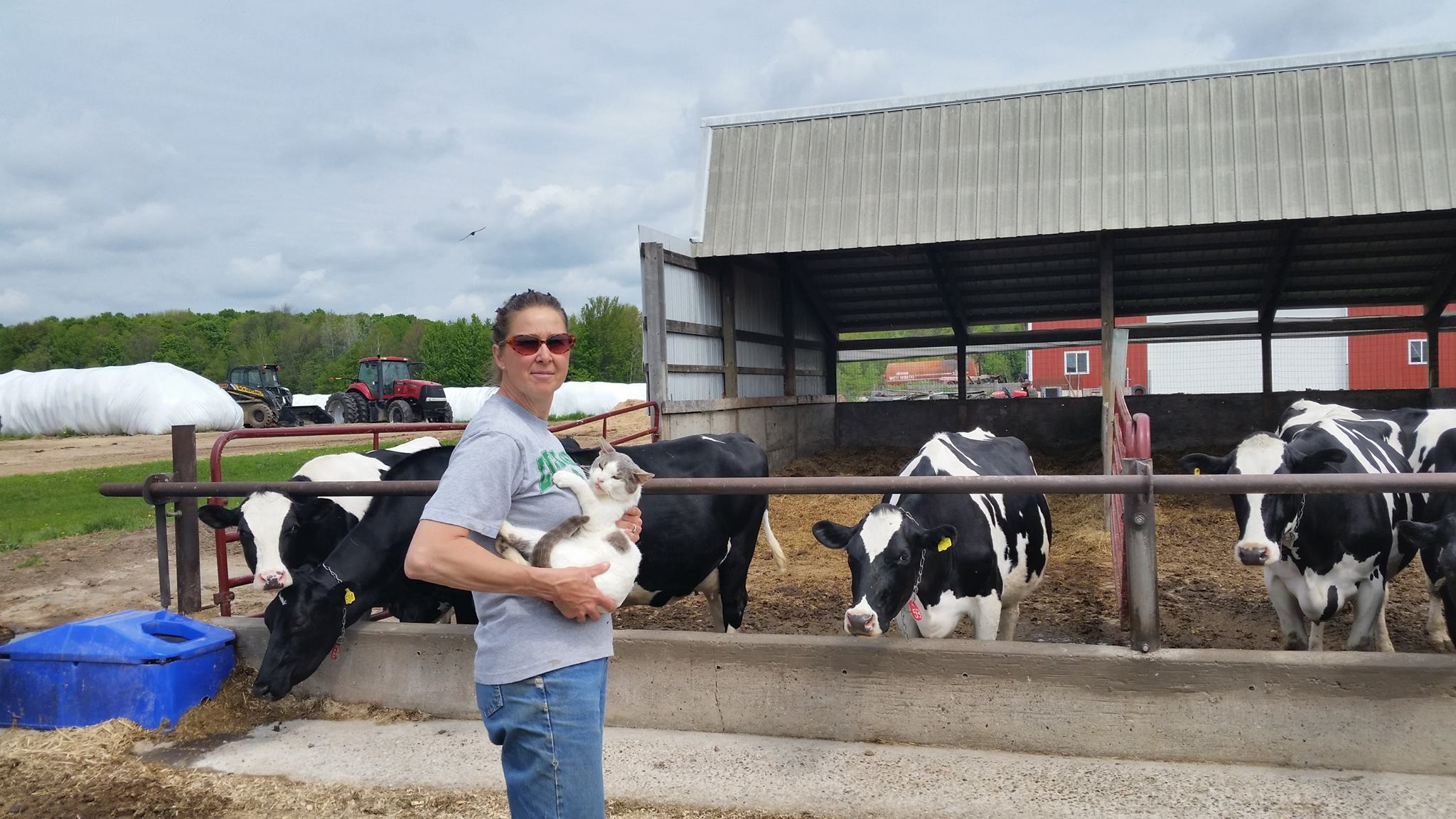 June Dairy Month Farm Stop: Patty and Irvin Stadler do it all on their farm in Birnamwood