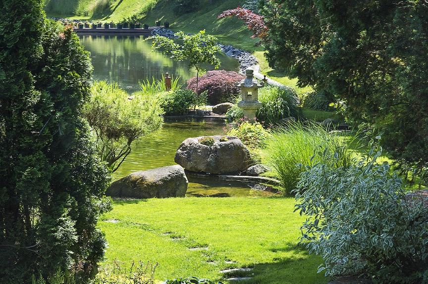 Master Gardener Plant Sale this Saturday