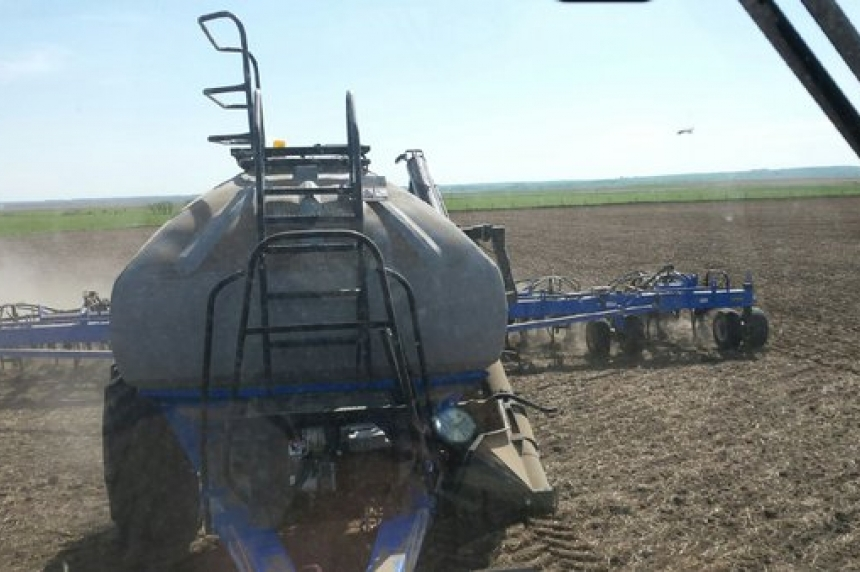 Seeding mostly complete in Sask.: crop report