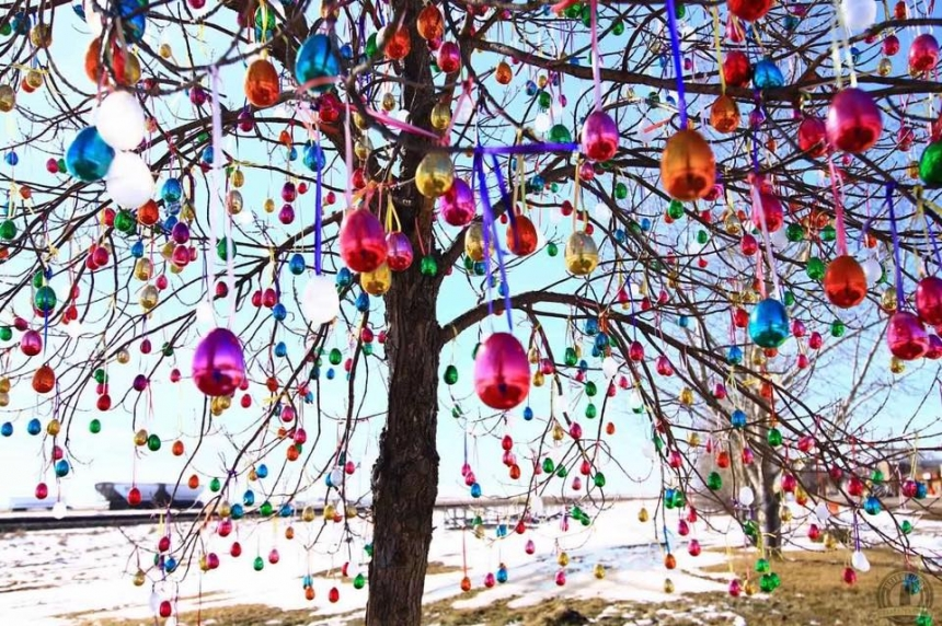 Easter miracle tree grows funds for Aberdeen