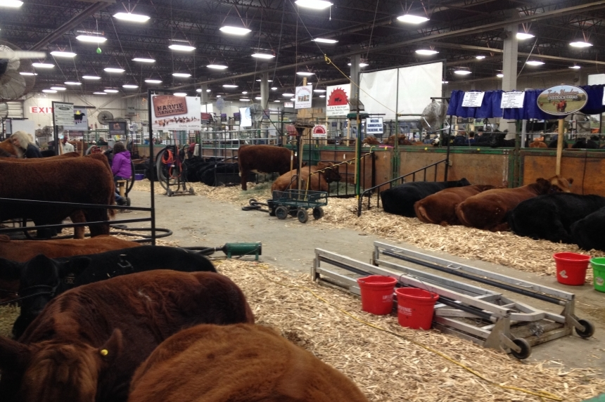 Big business, new events to look forward to as Agribition kicks off in Regina