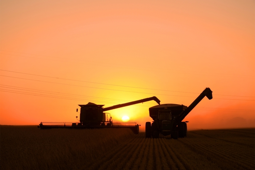 Harvest continues in Sask. as 95 per cent of crop combined: Crop report
