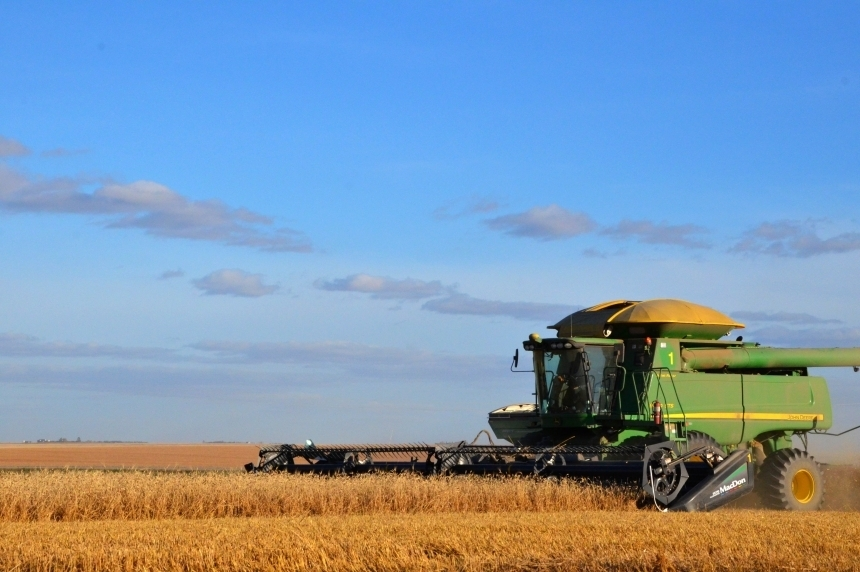 Province says 50% of Sask. hay crops bailed