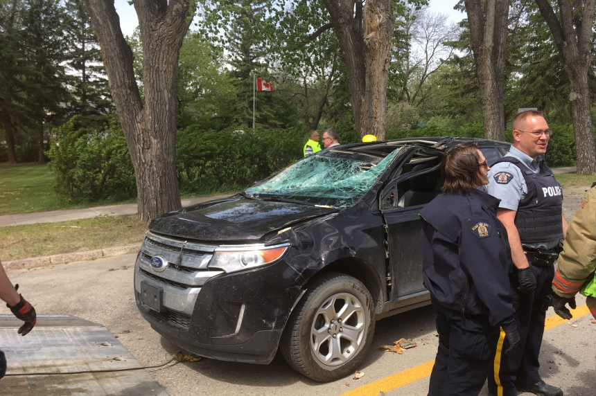 Sask. woman recovering after wind blows tree onto car
