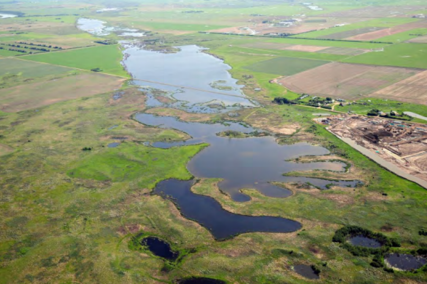 Canadian prairie grasslands shrinking faster than rainforest