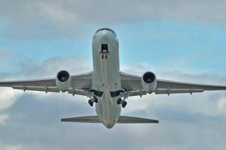 Air Canada pilot diverts Tel Aviv-to-Toronto flight to ensure dog's safety
