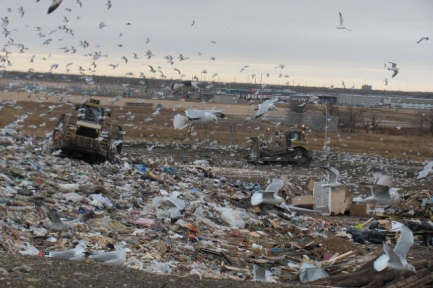 City collecting hazardous and yard waste in Regina