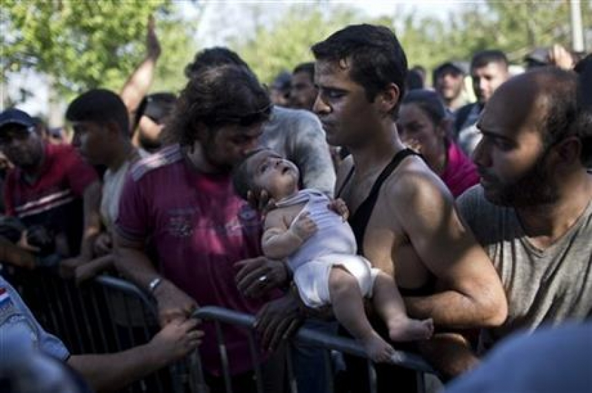 Croatia staggers as 8,900 migrants enter; some trampled in chaotic rush to get buses, trains