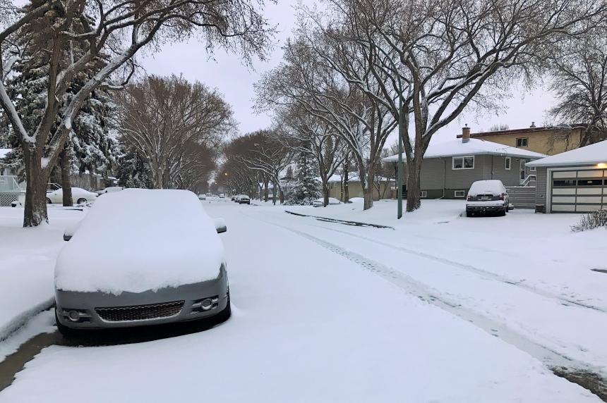 'Rude awakening:' Southern Sask. wakes up to spring snow