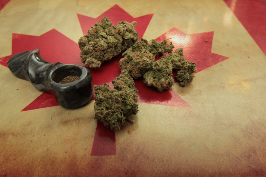 Pot possession charges likely to decrease over next year: Saskatoon police chief