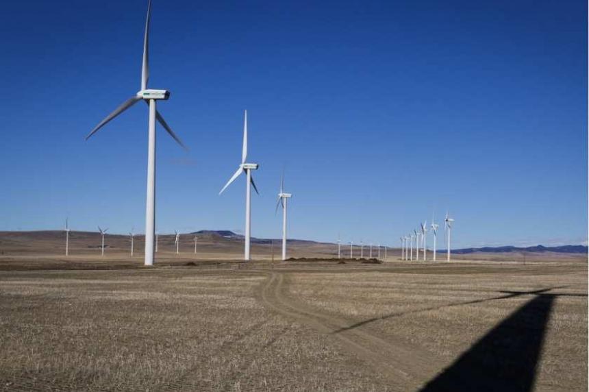 Birds block wind energy project near Chaplin, Sask.