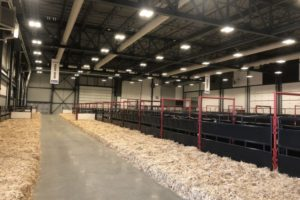Barns at International Trade Centre Evraz Place - BG - Nov 6 2017