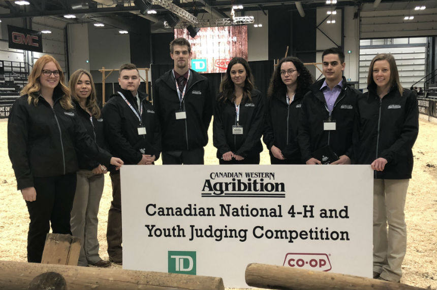 Livestock judging competition helps teens beef up resume