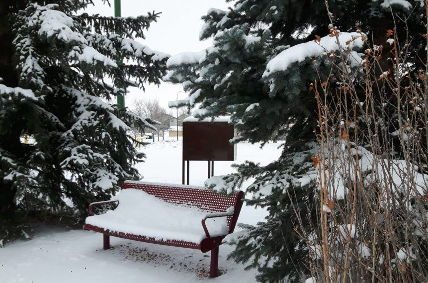 Southern Sask. under snowfall warning