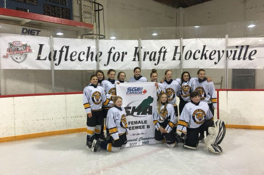 Small Sask. town needs help to become Kraft Hockeyville