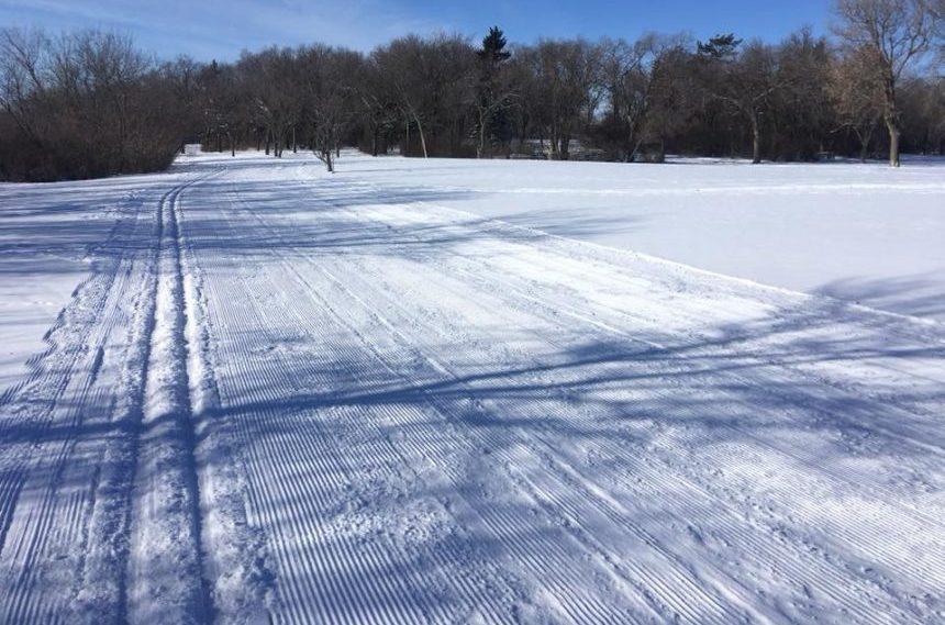Snow brings new life for skiers in Regina