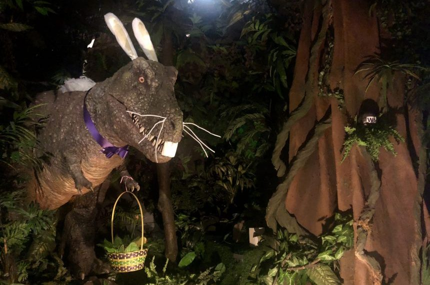 Royal Saskatchewan Museum holds annual dino egg hunt