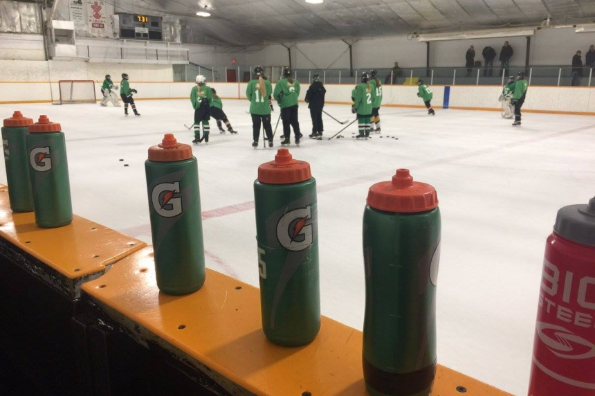 Sask. hockey to put borders on where girls can play