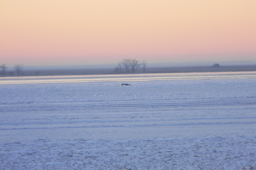 2 fishermen escape after truck breaks through ice on Last Mountain Lake