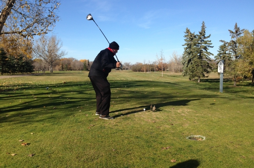 Warm weather an early gift for ice cream lovers and golfers