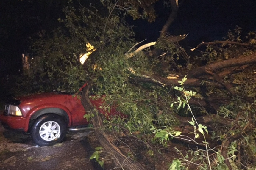 North Battleford storm downs trees and floods streets
