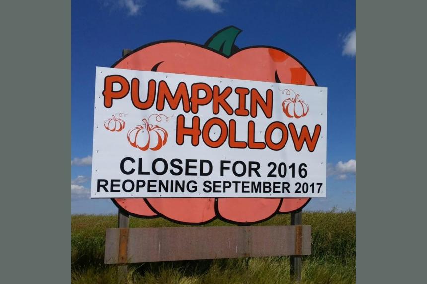 Pumpkin Hollow near Lumsden not opening in 2016