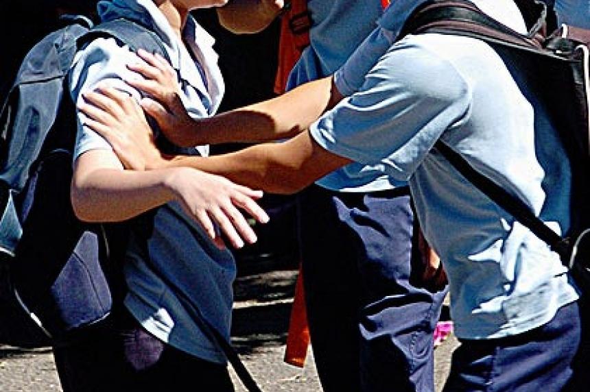 Saskatoon anti-bullying bylaw heads to city council