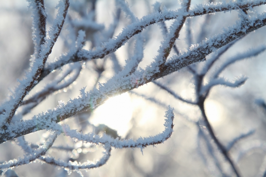 First report of frost touching parts of Saskatchewan
