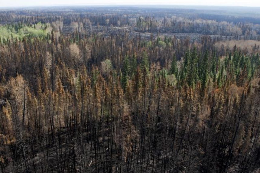 All alerts, evacuation orders lifted as worst wildfire season eases in B.C.