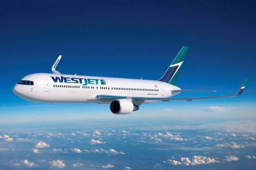 Saskatoon man fined for stealing megaphone from WestJet plane