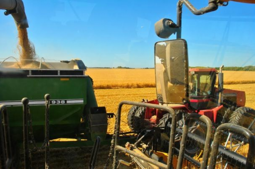 Sask. farmer wishes rain fell sooner
