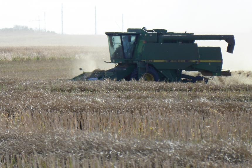 Despite rain, farmers make progress in harvest