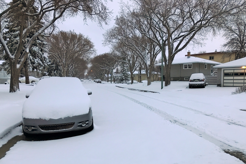 'Rude awakening:' Southern Sask. wakes up to spring snow