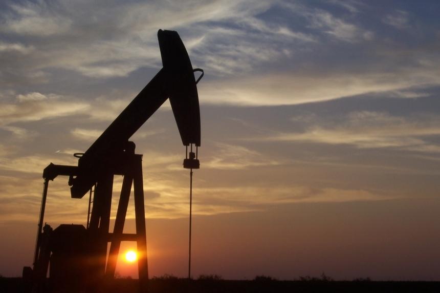 Sask. resources to rebound slightly in 2017: economist