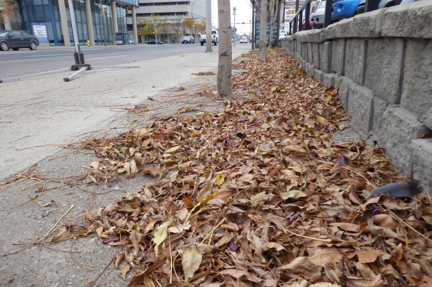 Last Regina yard waste depot of the year coming up