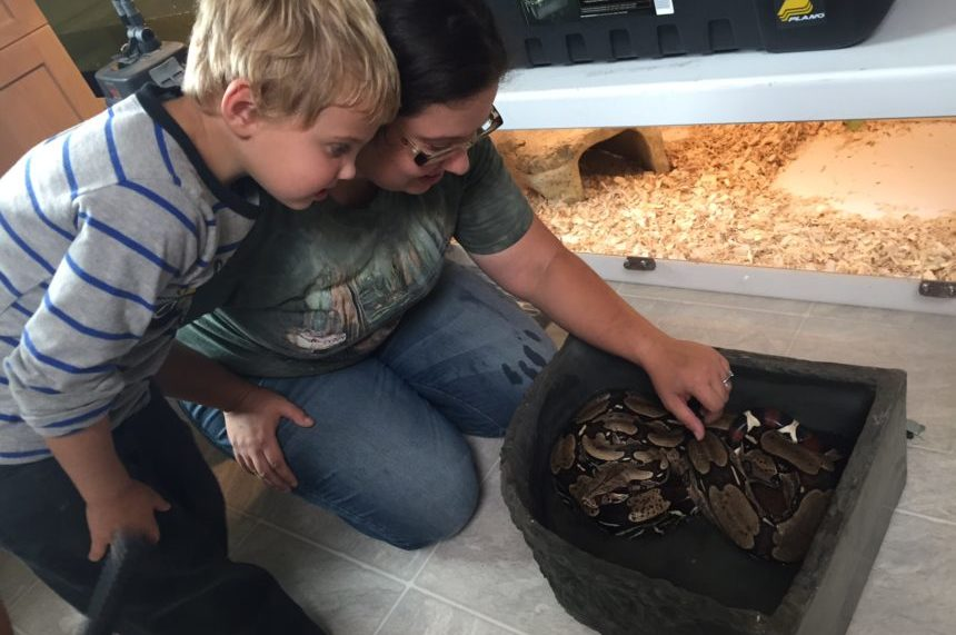 Sask. reptile rescue caring for constrictor looks to expand