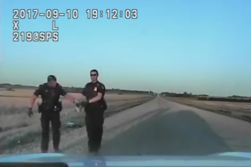 'It's enormous': Dashcam video shows police capturing snake