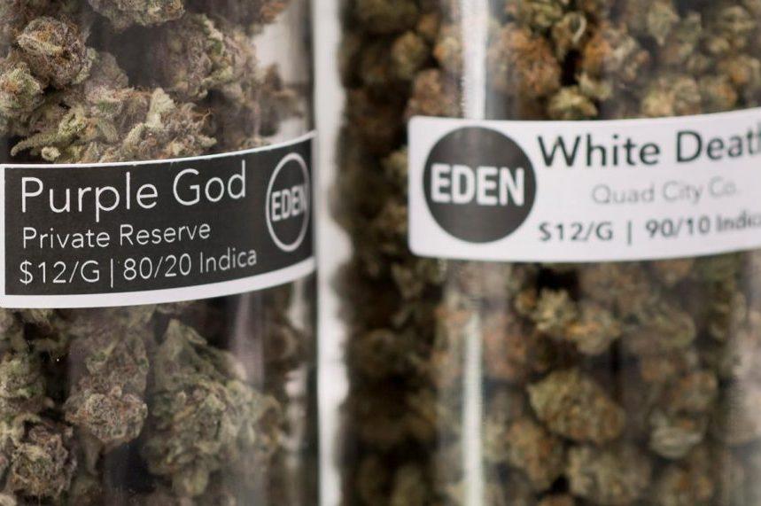 Doctors' group wants Health Canada, not industry, to design marijuana labelling