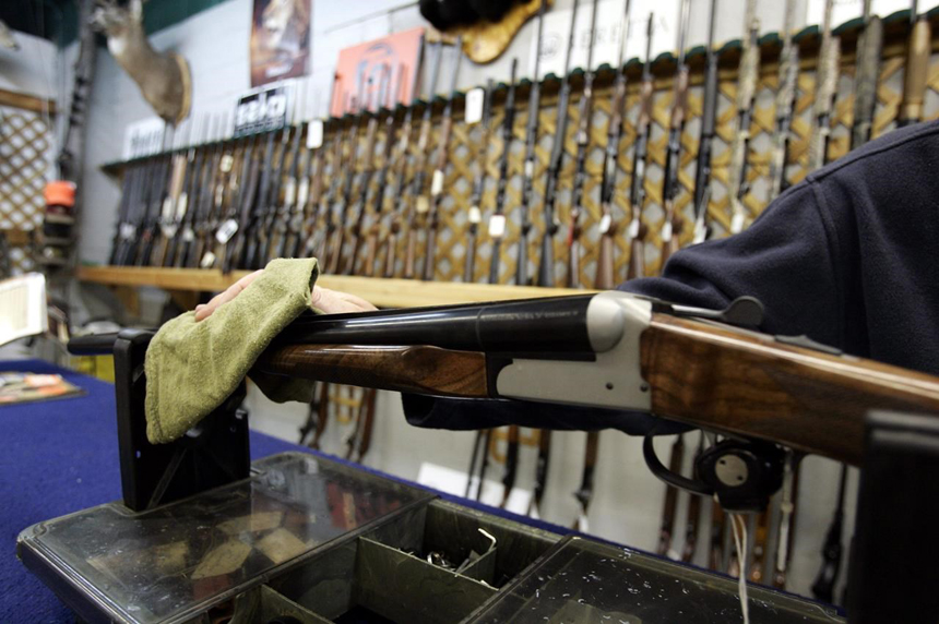 Liberal bill would tighten controls on sale, licensing of firearms
