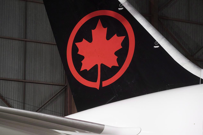 Raccoon delays Air Canada flight in Saskatoon by nearly seven hours
