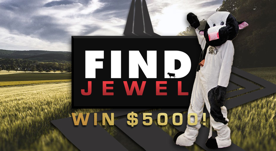 Find Jewel The JRfm Cash Cow