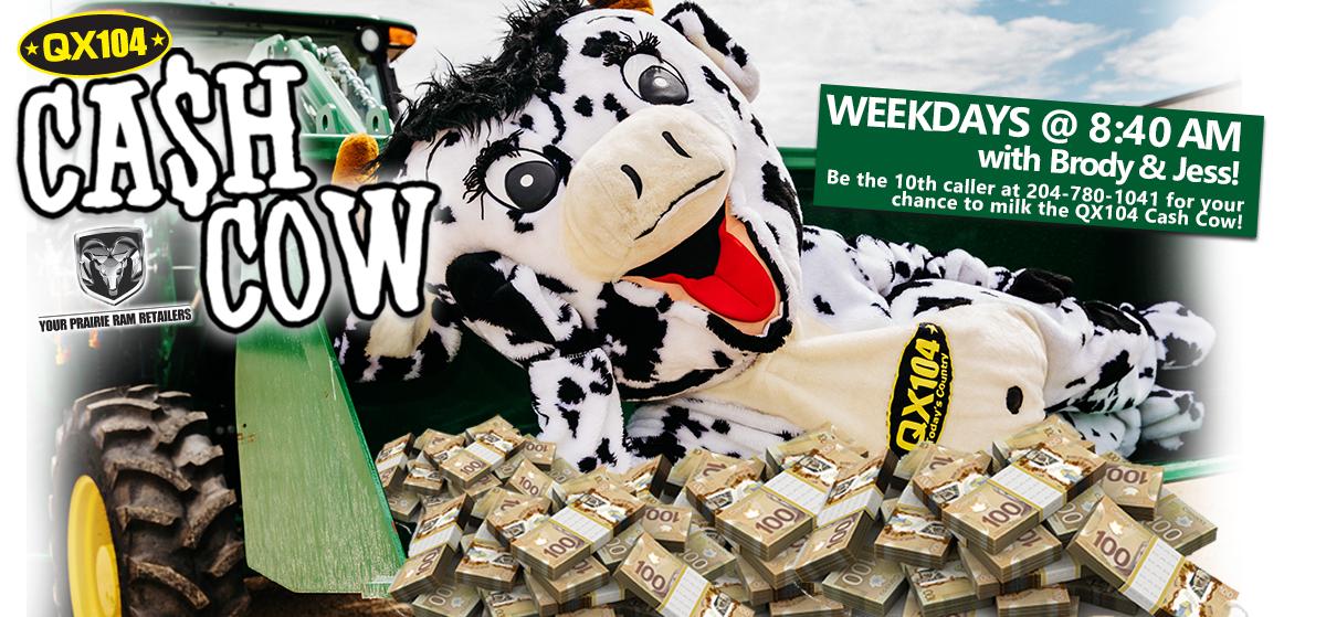 QX 104 Cash Cow