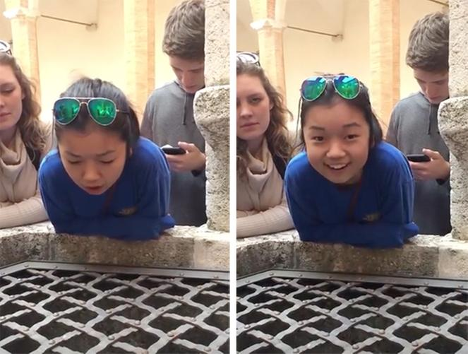 Singing Hallellujah  into a well goes  Viral! Love it!