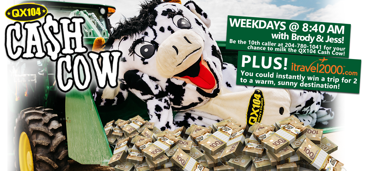 QX 104 Cash Cow